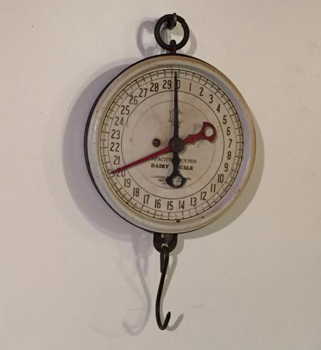 Dairy Scale - A16345